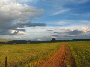 Lonely Arizona Road