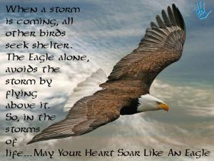 When a storm is coming all other birds seek shelter_ The eagle alone avoids the storm by flying above it_ So in the storms of life may your heart soar